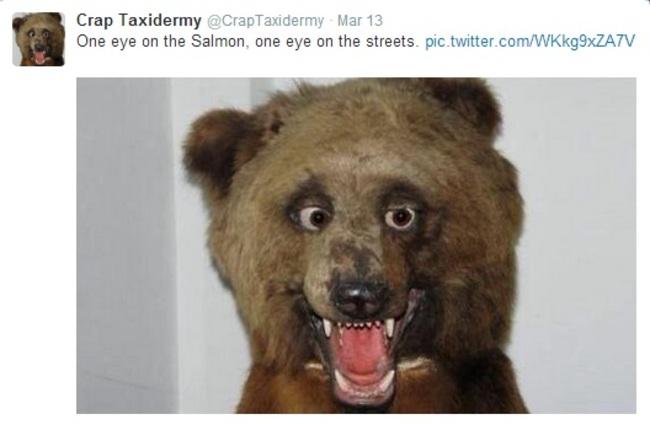 badtaxidermy-redneckbear.jpg