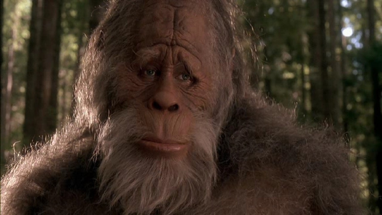 Bigfoot.jpeg