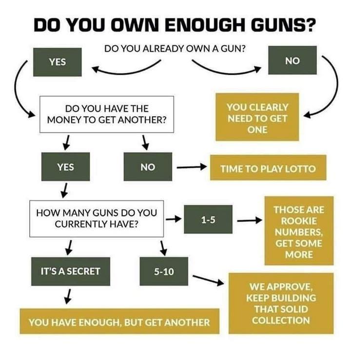 enough guns.jpg