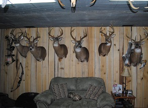 hunting room.JPG