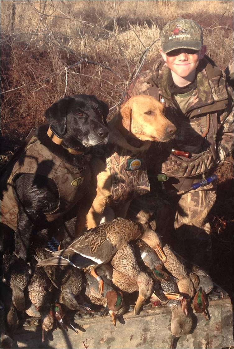 jake dogs ducks 2015.jpg