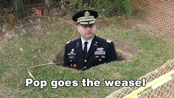 pop goes the weasel.jpg