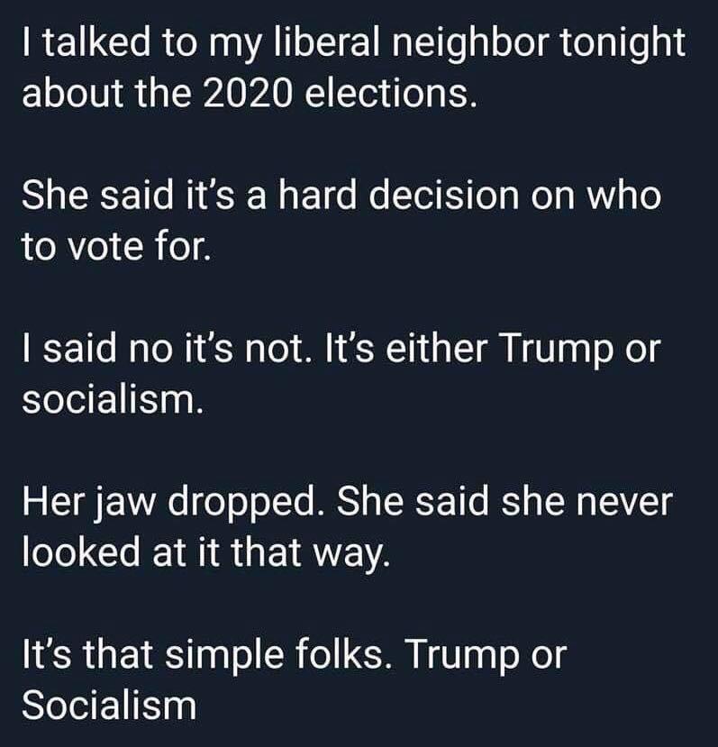 Vote trump or socialism.jpg